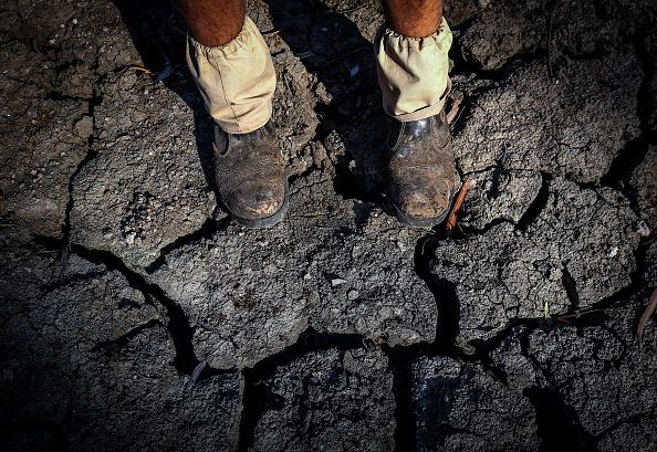 環境保護「New South Wales River Systems In Severe Decline As Drought Continues」:写真・画像(9)[壁紙.com]