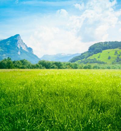Blue「Fresh green meadow in mountains」:スマホ壁紙(14)