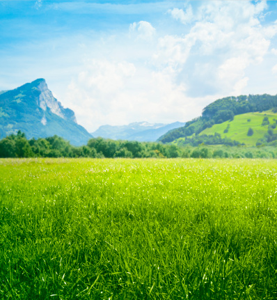 European Alps「Fresh green meadow in mountains」:スマホ壁紙(2)