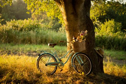 秋「レトロバイクで、レッドワインのピクニックバスケット XXXL」:スマホ壁紙(16)