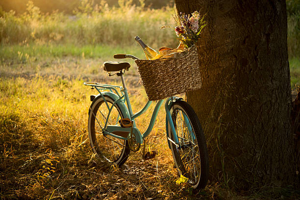 Retro Bicycle with Wine in Picnic Basket - XXXL:スマホ壁紙(壁紙.com)