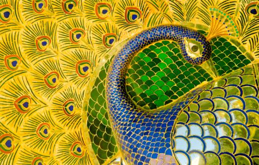Rajasthan「Enamelled peacock at City Palace」:スマホ壁紙(14)