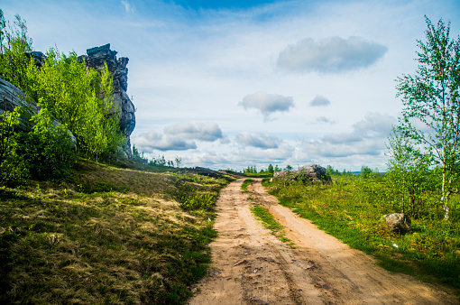Country Road「Dirt path in rural meadow」:スマホ壁紙(11)