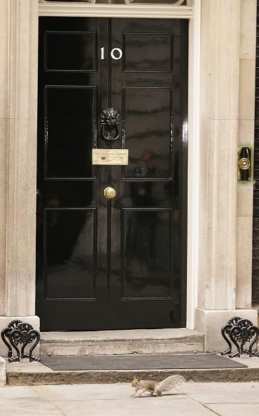 Squirrel「Speculation On Blairs Departure Dominates The Political Agenda」:写真・画像(9)[壁紙.com]