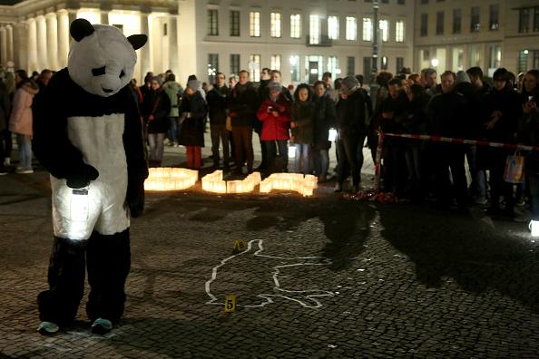 World Wildlife Fund「Earth Hour In Berlin」:写真・画像(11)[壁紙.com]