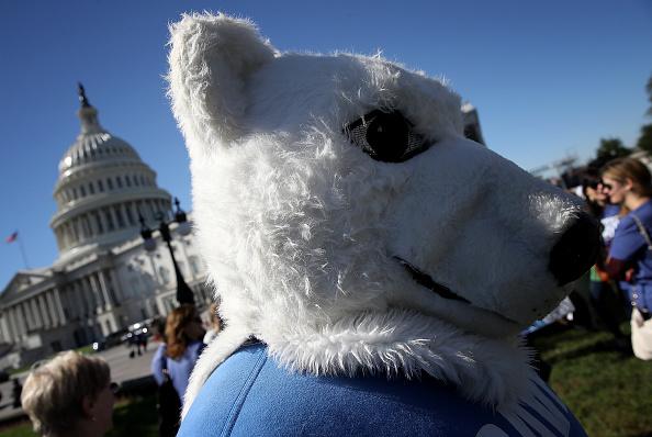 Sponsor「Senate Democrats Hold News Conf. On Arctic National Wildlife Refuge Drilling」:写真・画像(3)[壁紙.com]