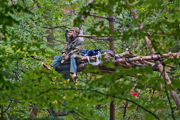 Tree「Police To Evict Protesters In Hambach Forest Coal Mine Standoff」:写真・画像(6)[壁紙.com]
