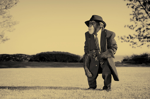 Sepia Toned「Old Photographer」:スマホ壁紙(12)