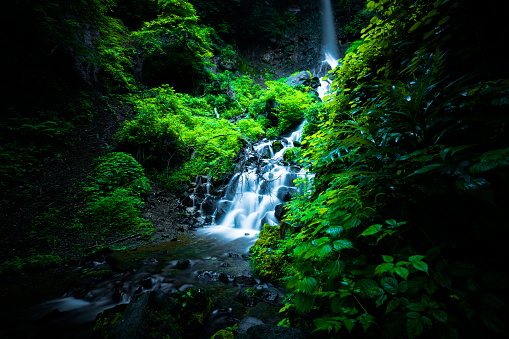 Lush Foliage「Waterfall in Karuizawa, Japan」:スマホ壁紙(14)