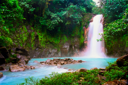 Eco Tourism「Waterfall in tropical rainforest」:スマホ壁紙(6)
