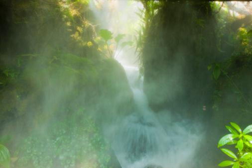 Amazon Rainforest「Waterfall in rainforest」:スマホ壁紙(5)