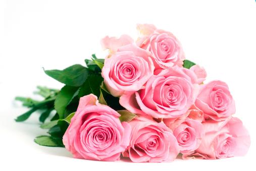 花束「ピンクのバラの白い背景に」:スマホ壁紙(3)