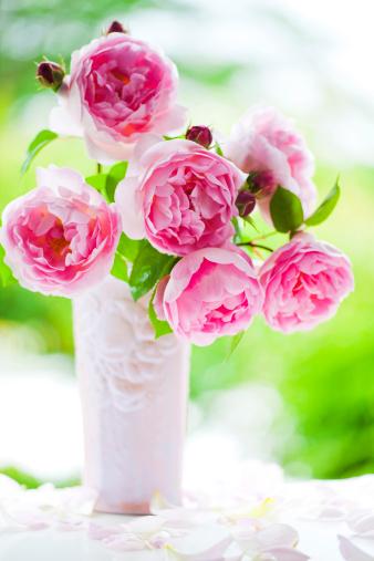 Flower Arrangement「Pink Roses in Vase」:スマホ壁紙(14)