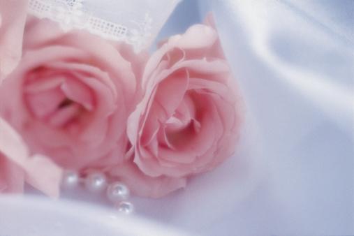恋愛「Pink roses with pearls on satin」:スマホ壁紙(10)