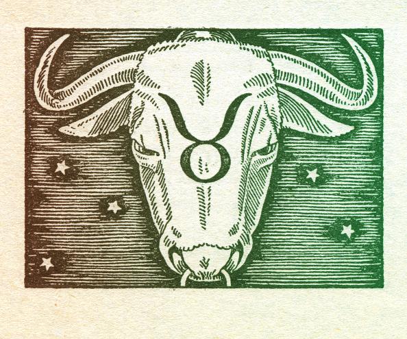 Horned「Taurus」:写真・画像(8)[壁紙.com]