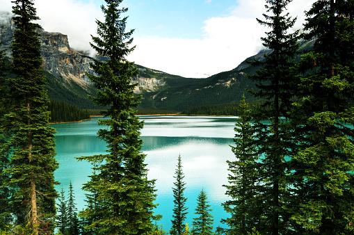 Yoho National Park「Beautiful Emerald Lake,Yoho National Park, Canada」:スマホ壁紙(3)