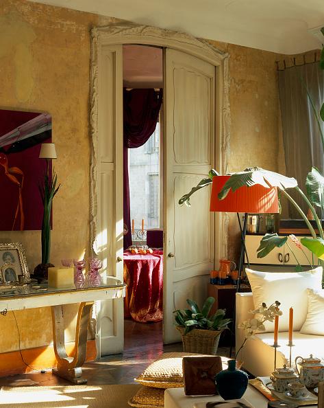 葉・植物「View of ornaments adorned in a living room」:写真・画像(19)[壁紙.com]