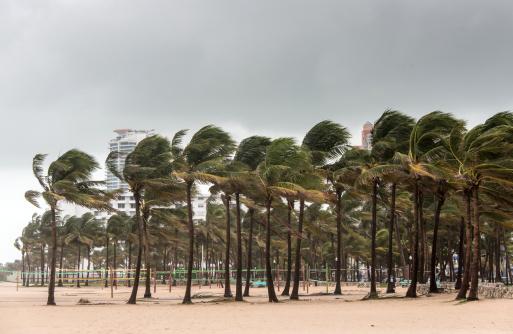 Miami Beach「ビーチの嵐」:スマホ壁紙(7)