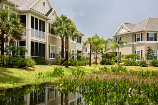 Gulf Coast States「Newly constructed condominiums surrounded by palm trees」:スマホ壁紙(15)