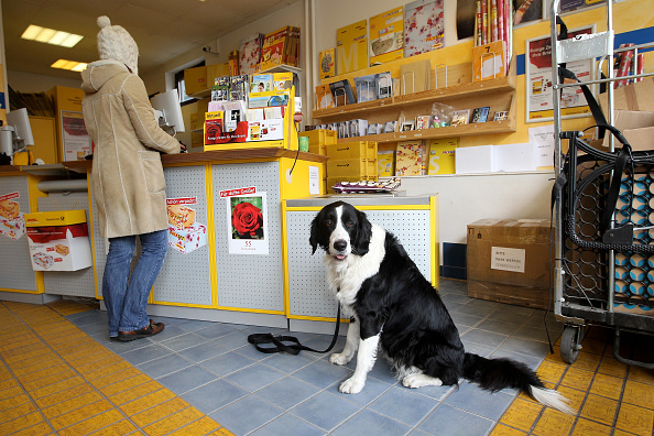 Franchising「Deutsche Post Reports 2009 Earnings」:写真・画像(11)[壁紙.com]
