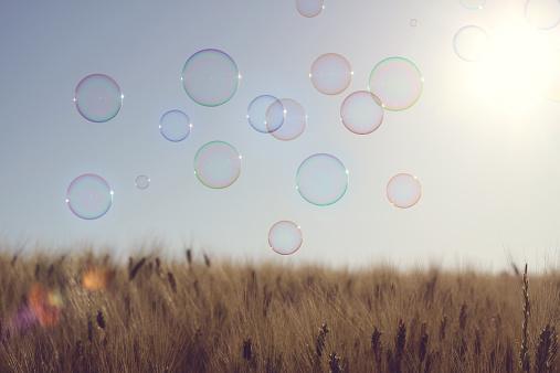 Soap「Bubbles flying over field」:スマホ壁紙(10)