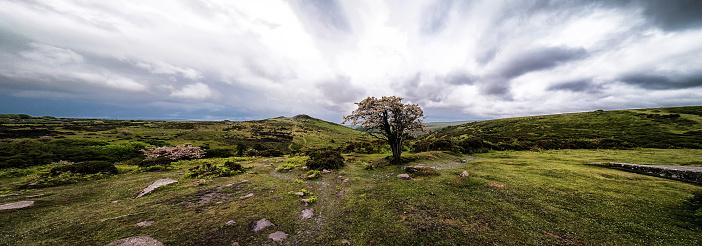 Hawthorn「Stormy Sky, Panorama」:スマホ壁紙(14)