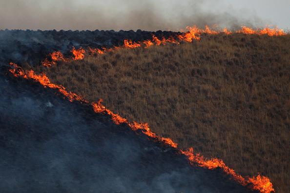 Stephen Lam「Jerusalem Wildfire North Of San Francisco Doubles In Size Overnight」:写真・画像(9)[壁紙.com]