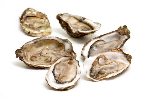 Mollusk「Fresh open oysters isolated on white 」:スマホ壁紙(18)