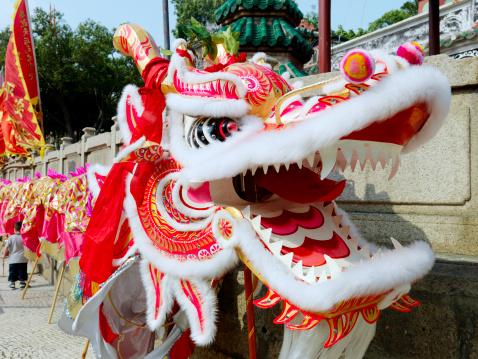 Dragon「A Dragon costume used for a parade in Macau」:スマホ壁紙(16)