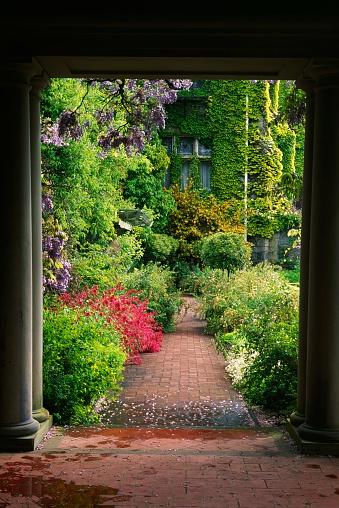 Ivy「Brick Walkway in Garden」:スマホ壁紙(17)