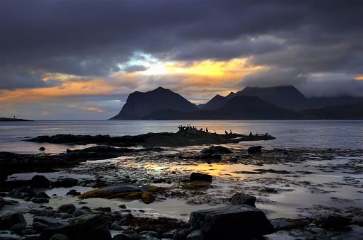 ビーチ「Silhouette of cormorant birds on beach at sunset, Lofoten, Norway」:スマホ壁紙(0)