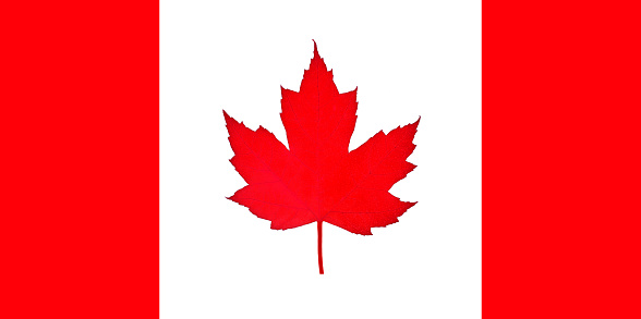 かえでの葉「Canadian flag imitated with use of natural leaf.」:スマホ壁紙(1)