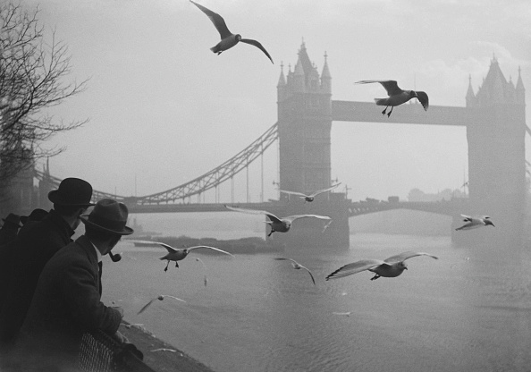 Scenics - Nature「Seagulls At Tower Bridge」:写真・画像(12)[壁紙.com]