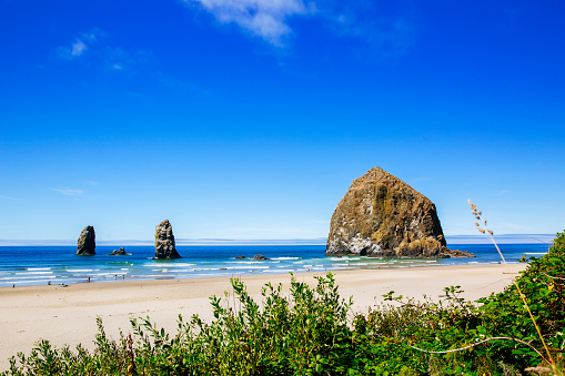 Cannon Beach「Sea stack rocks on beach under blue sky」:スマホ壁紙(13)