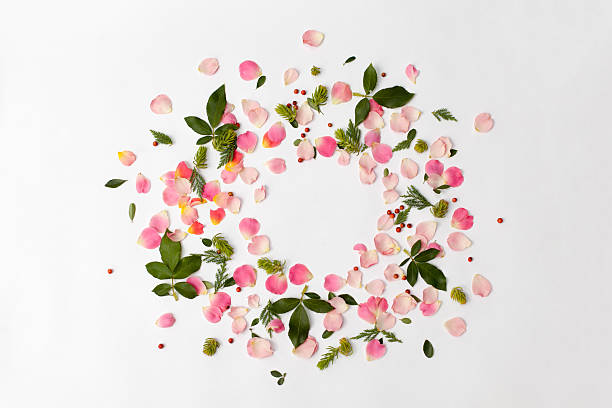 Floral round frame with rose petals and leaves on white:スマホ壁紙(壁紙.com)