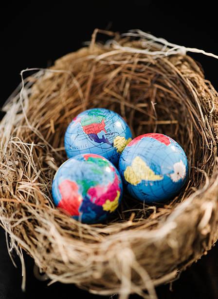 Small globes in a bird nest:スマホ壁紙(壁紙.com)