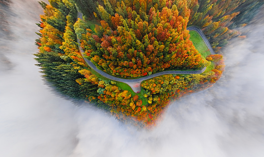 Hairpin Curve「Overhead aerial view of autumn forest road in morning fog. Mosele Valley, Germany.」:スマホ壁紙(0)
