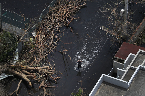 Damaged「Puerto Rico Faces Extensive Damage After Hurricane Maria」:写真・画像(5)[壁紙.com]