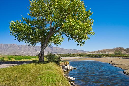 飽和色「リオグランデ川、ハコヤナギエルパソ、テキサスで」:スマホ壁紙(2)