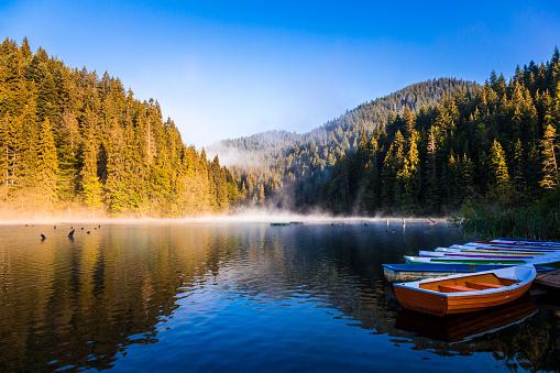 トウヒ「霧、森行で手漕ぎボートと早朝の湖」:スマホ壁紙(18)