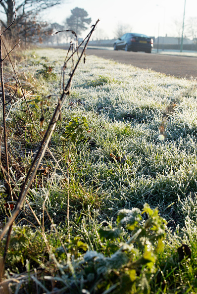 Focus On Foreground「Early morning frost near a road in Ipswich, UK」:写真・画像(18)[壁紙.com]