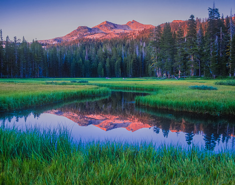 Mountain Range「Early morning on Wrights Lake, near Lake Tahoe, California」:スマホ壁紙(14)