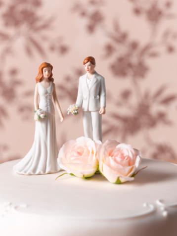 Equality「Lesbian wedding cake figurines」:スマホ壁紙(12)