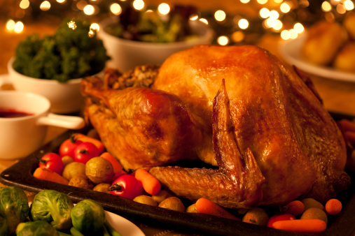Stuffed Turkey「Turkey Dinner」:スマホ壁紙(14)
