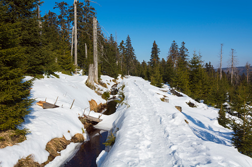 Harz Mountain「Footpath through Forest with Stream in Winter, Clausthaler Flutgraben, Altenau, Harz, Lower Saxony, Germany」:スマホ壁紙(16)