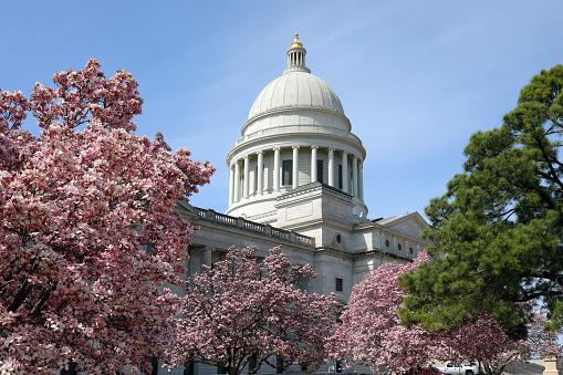 Little Rock - Arkansas「State Capitol of Arkansas in spring」:スマホ壁紙(13)