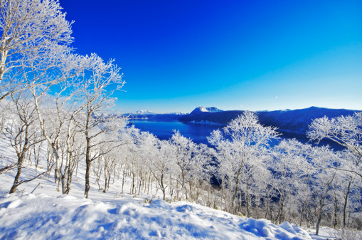 Japan「Trees Near Lake Mashu In Winter」:スマホ壁紙(9)