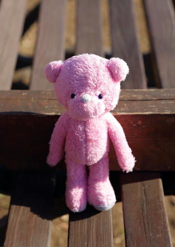 ぬいぐるみ「Pink teddy bear on the bench」:スマホ壁紙(15)