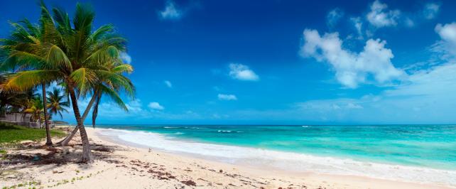 南国「手のひらでカリブ海のビーチ」:スマホ壁紙(4)