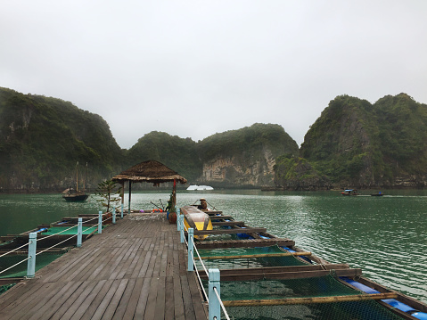 Limestone「Ha Long Bay views of limestone karsts and isles」:スマホ壁紙(12)